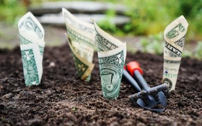 Wzrost przychodu o 70% z SEO i 92% z AdWords